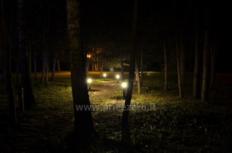 Lauku seta pie ezera Traku rajona - 43