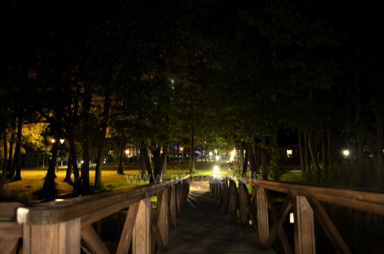 Lauku seta pie ezera Traku rajona - 42