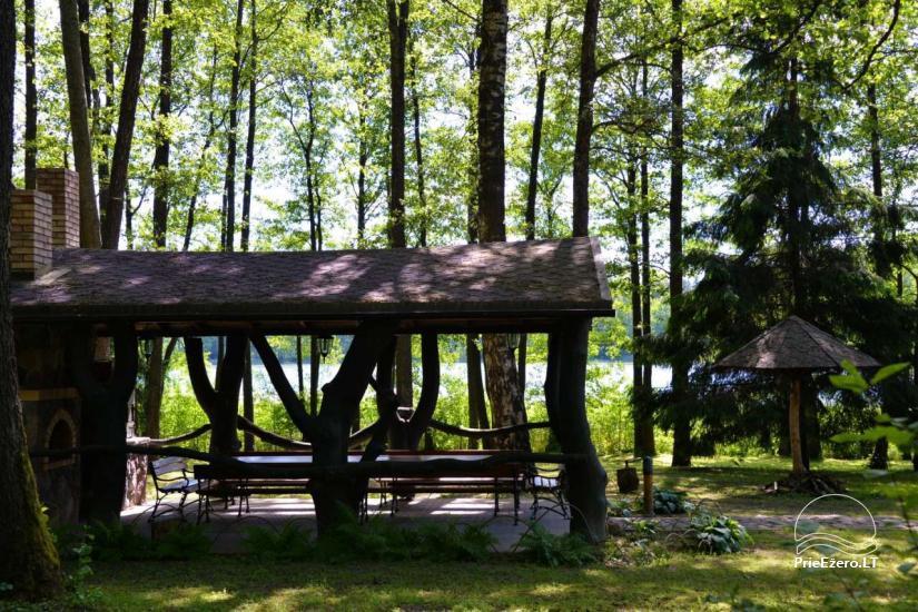 Lauku seta pie ezera Traku rajona - 19