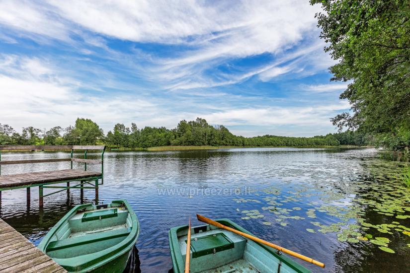 Holandes parks – majas un Vasarnīcas īre - 29