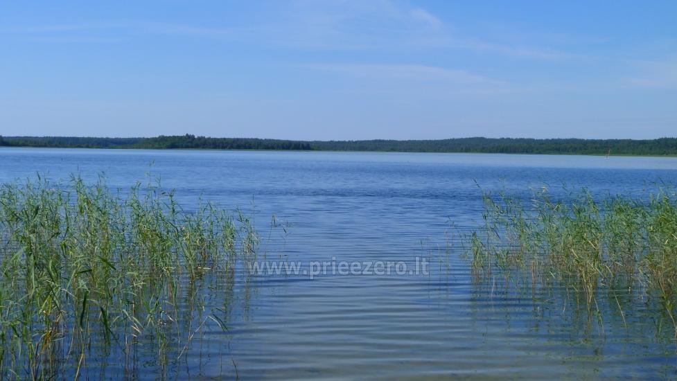 Lauku seta Moeltai rajona pie upes  Stirnelės viensėdis - 34