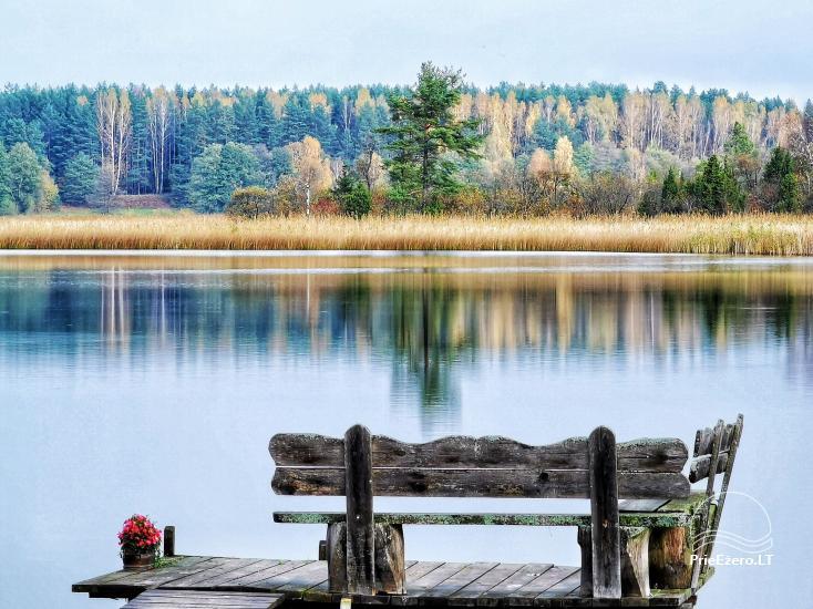 Guļbūve uz ezera krastā Baluošas - 10