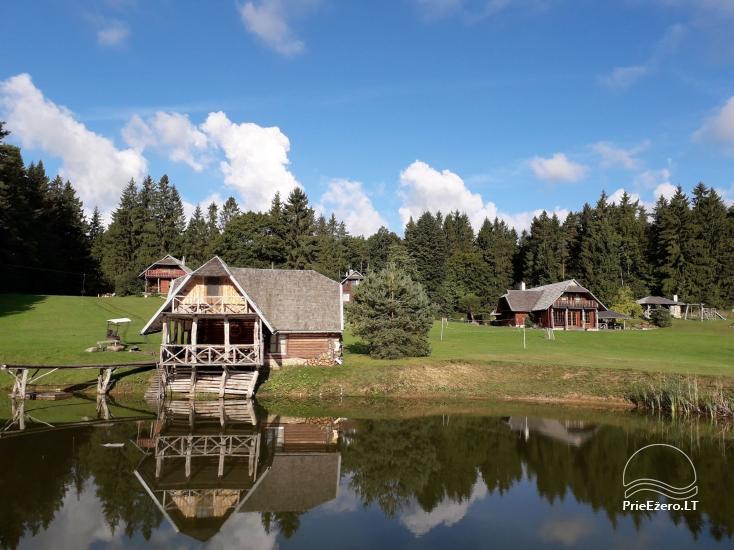 Lauku seta, brivdienu maju ire pie ezera Plateliai - 29