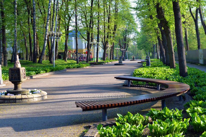 Dzīvoklis ar skatu uz ezeru, pašā centrā Druskininkai - 22