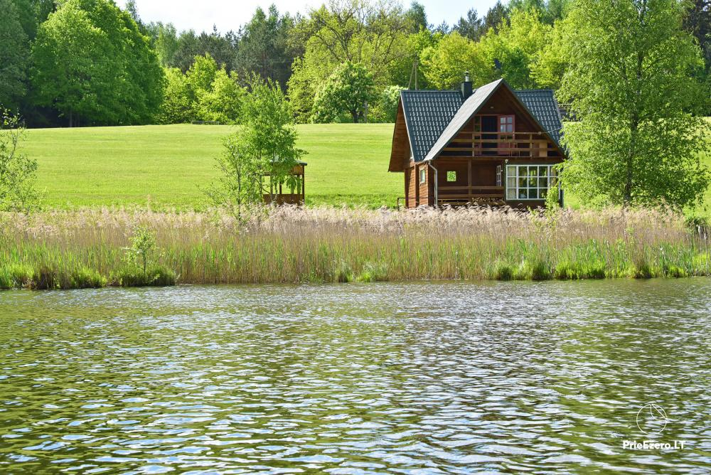Lauku māja pie ezera Delinis Pagriaumėlė - 11