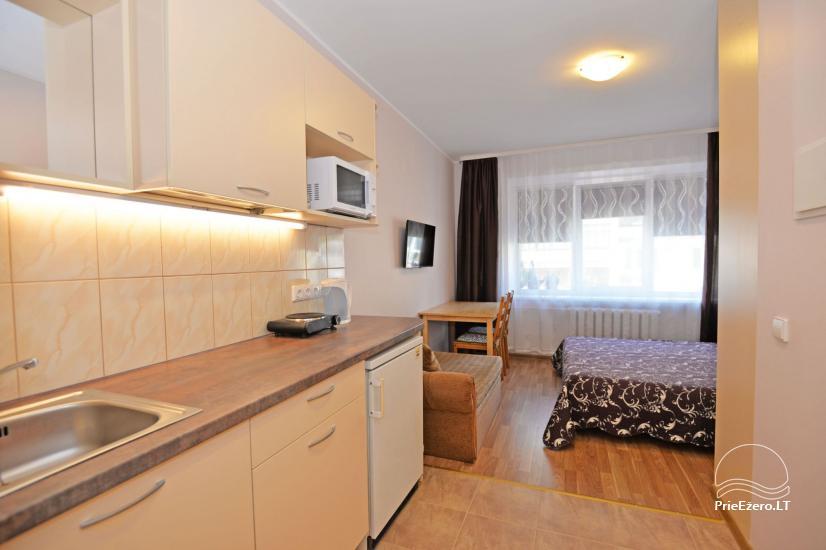 Viena istaba dzīvokli centrā Druskininkos - 6