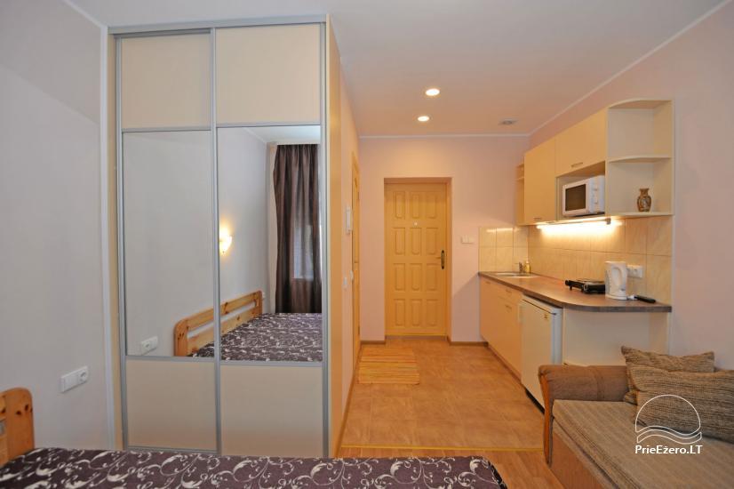 Viena istaba dzīvokli centrā Druskininkos - 9