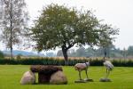 Villa Skuodas rajona Gervių gūžta: banketu zāle, sauna, guļamistabas