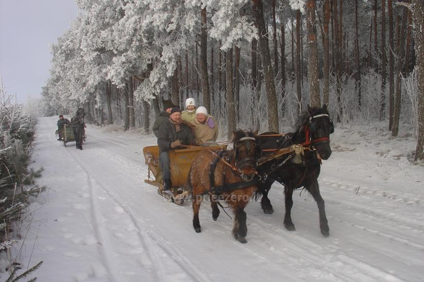 Izklaides un atpūtas centrs pie ezera Seivis Polijā Šilainė - 17