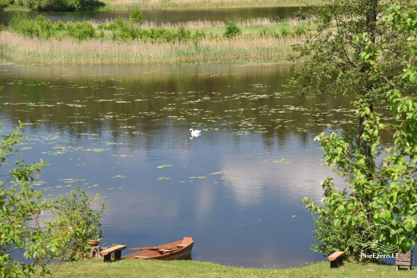 Dringis sēta krastā ūdens dīķī - 14