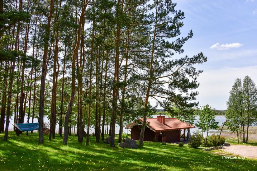 Brīvdienu māja diviem ar saunu ezera krastā, sēta Pas Drambliuką - 10