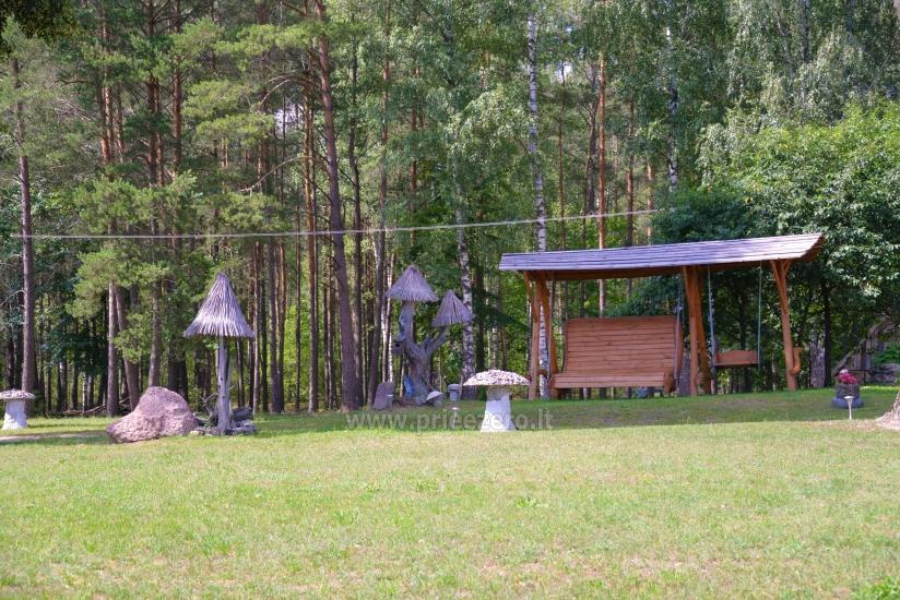 Lauku sēta Vainiūnai in Lazdijai reģionā, Lietuva - 39