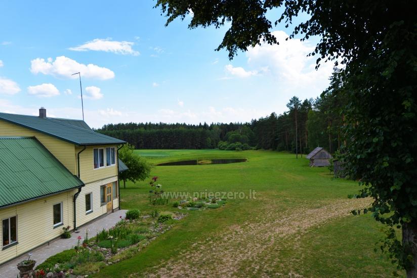 Lauku sēta Vainiūnai in Lazdijai reģionā, Lietuva - 49
