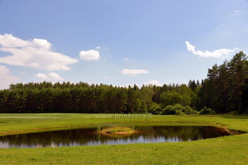 Lauku sēta Vainiūnai in Lazdijai reģionā, Lietuva - 55