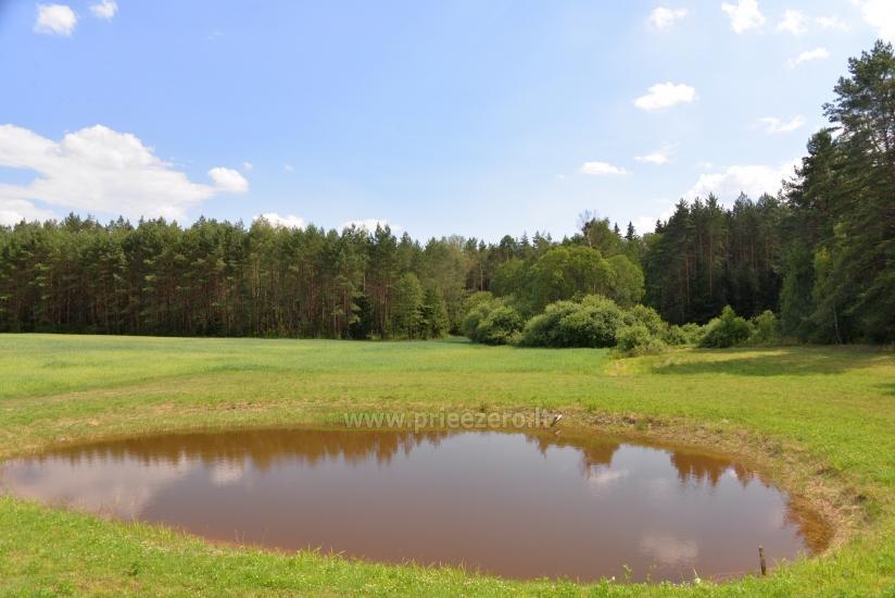 Lauku sēta Vainiūnai in Lazdijai reģionā, Lietuva - 57
