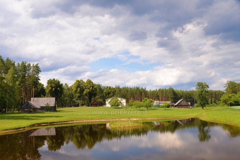 Lauku sēta Vainiūnai in Lazdijai reģionā, Lietuva - 52