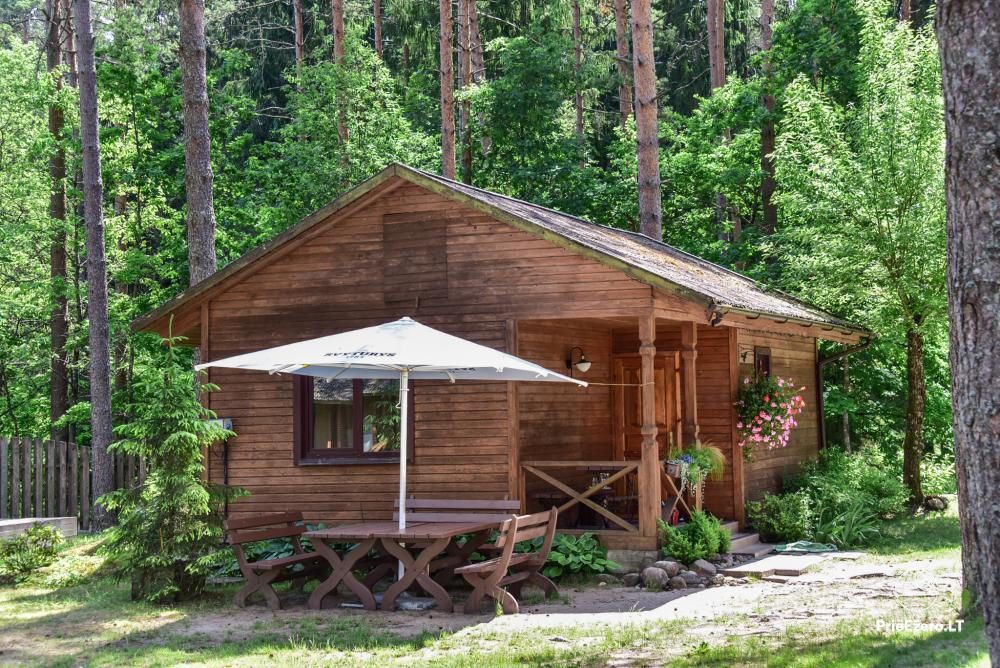 Viesu nams netālu no Plateliai ezera Banga - 25