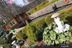 Brīvdienu mājas īre pie upes Ratnycele Lietuvā - 8