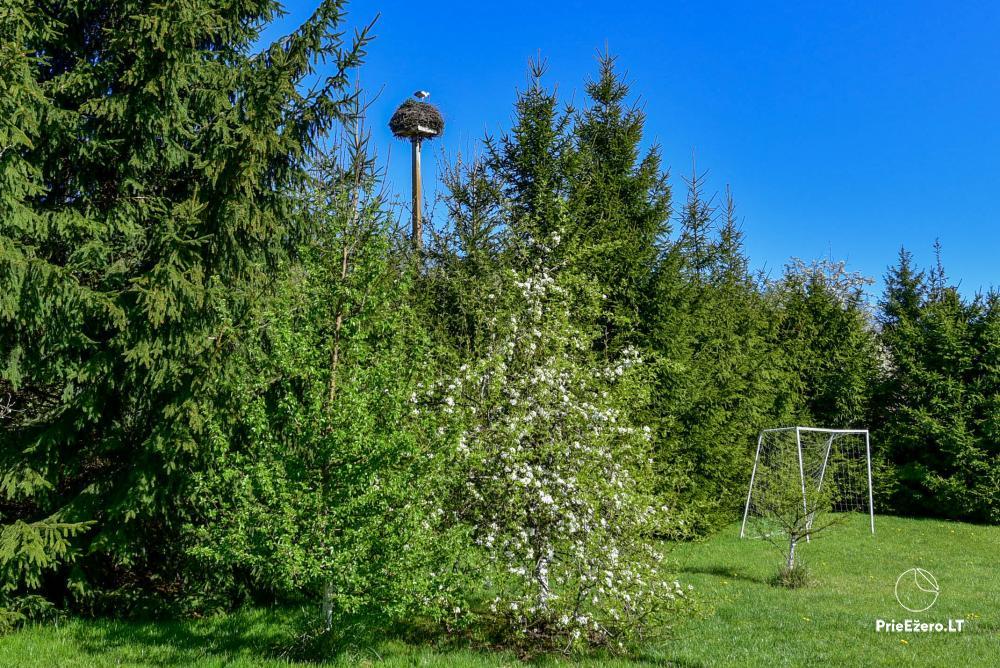 Lauku sēta Vilnoja ar pirti, džakuzi - 13