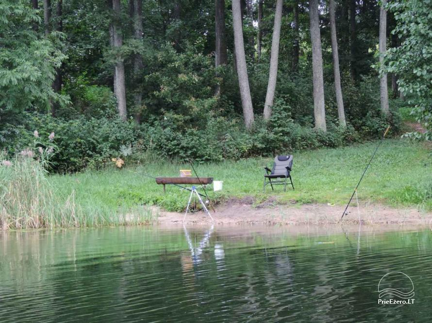 Brīvdienu mājas viensētā Čičiris ezera krastā - Lauryno sodyba - 25