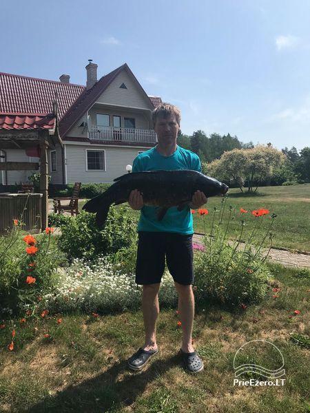 Brīvdienu mājas viensētā Čičiris ezera krastā - Lauryno sodyba - 27