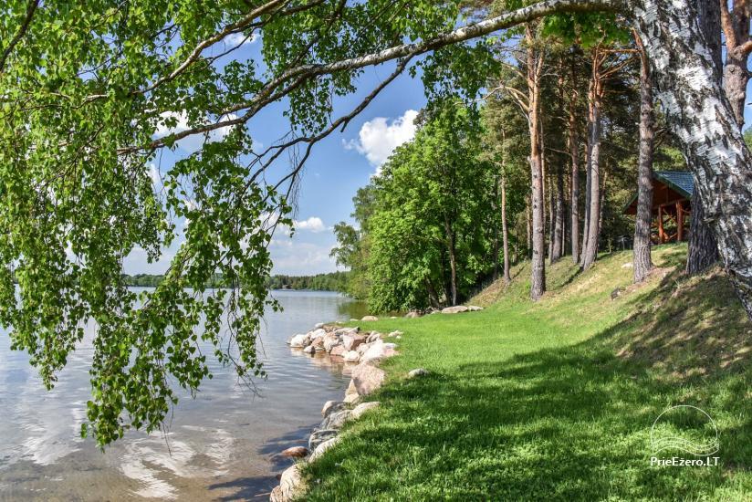 Lauku sēta Vencavas ezera krastā - 43