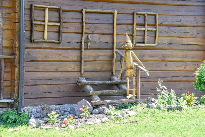 Zelta zivs - lauku sēta ar saunu brīvdienām un svētkiem - 34