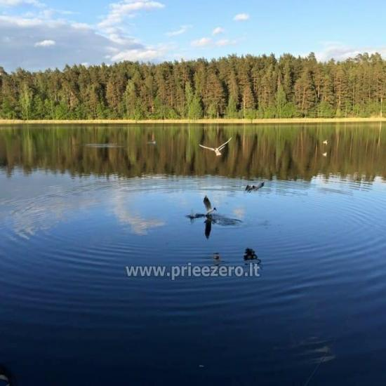 Atpūtas pie ezera Zeimenis Lietuvā - 10