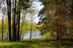 Lauku māja Molėtai pie ezera Aisetas Valainiai - 2