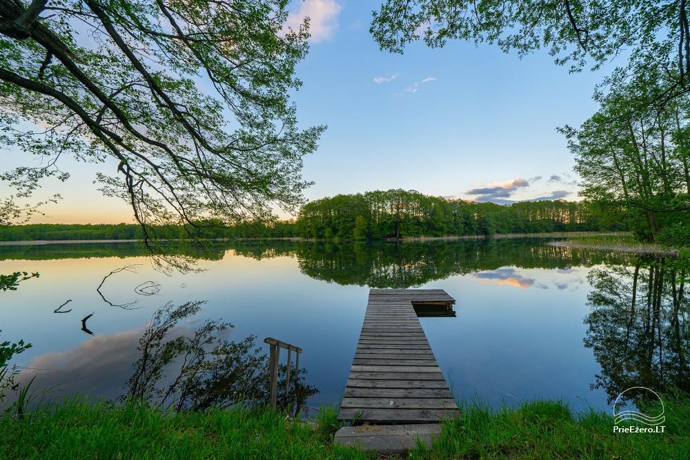 Mazie brīvdienu mājas īre pie Daugai ezera Lietuvā, Alytus r. - 3