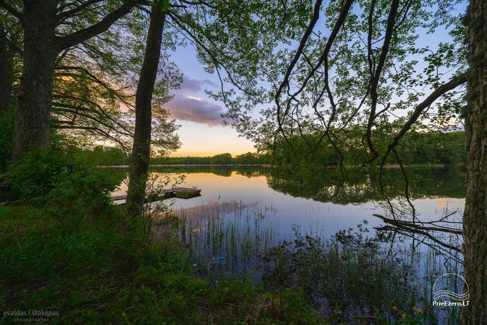 Mazie brīvdienu mājas īre pie Daugai ezera Lietuvā, Alytus r. - 4