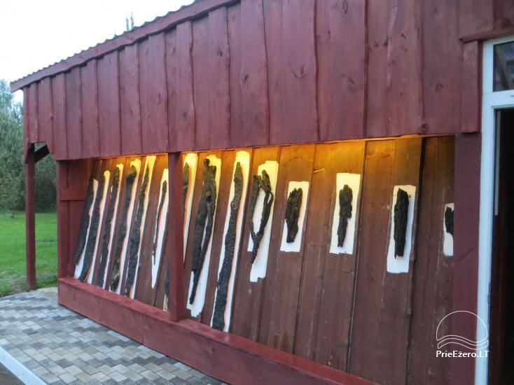 Brīvdienu mājiņas, pirts, baļļa, kajaki, kas sētā pie ezera Dviragis - 36