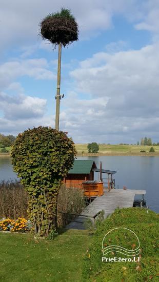 Brīvdienu mājiņas, pirts, baļļa, kajaki, kas sētā pie ezera Dviragis - 38