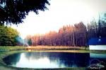 Baltā pagalms pie ezera un strauta Lietuvā - 9