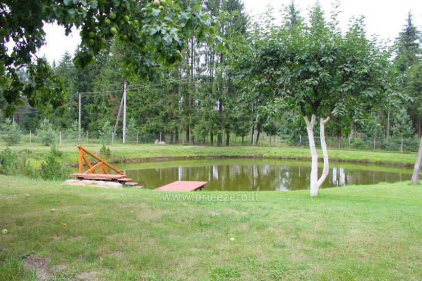 Lauku sēta, ko ieskauj meži Meža lauku māja - 8