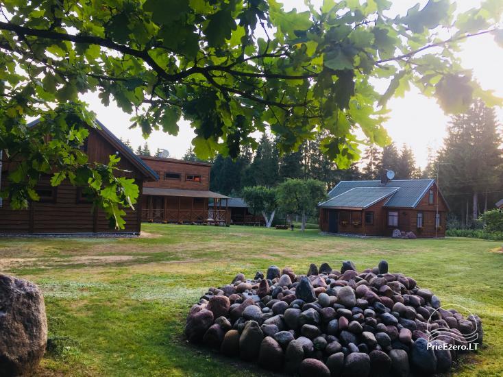 Lauku sēta, ko ieskauj meži Meža lauku māja - 3