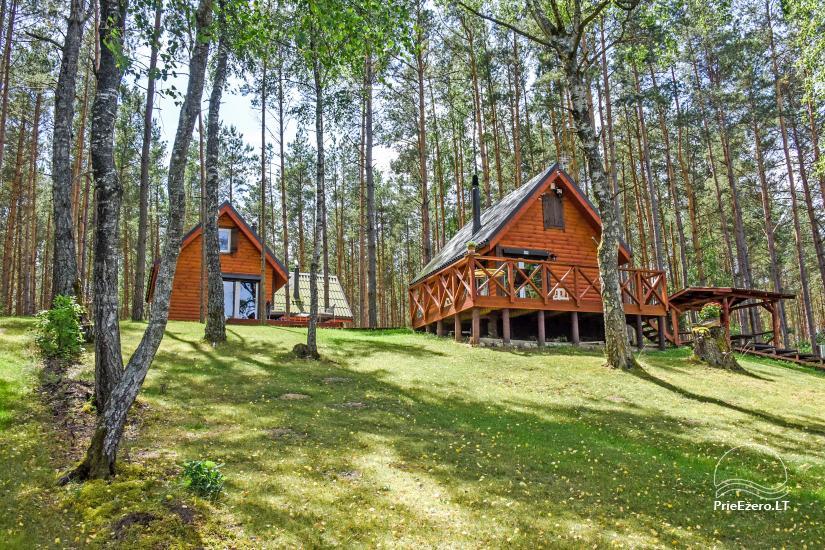 Lauku māja pie ezera Ilgis Moljeta rajonā, Lietuvā - 6