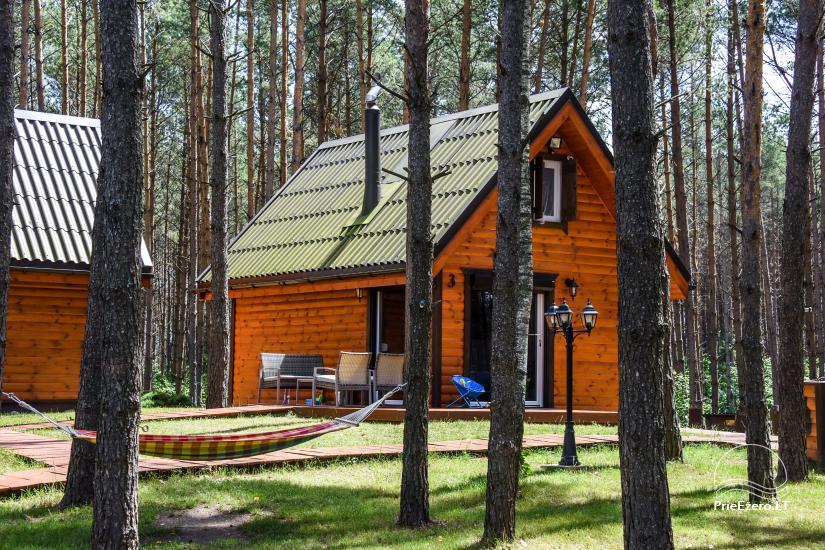 Lauku māja pie ezera Ilgis Moljeta rajonā, Lietuvā - 5