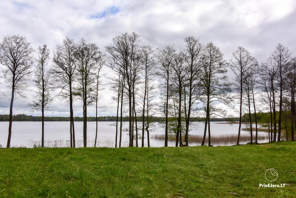 Lauku māja pie Avila ezera Zarasai rajonā, Lietuvā - 37