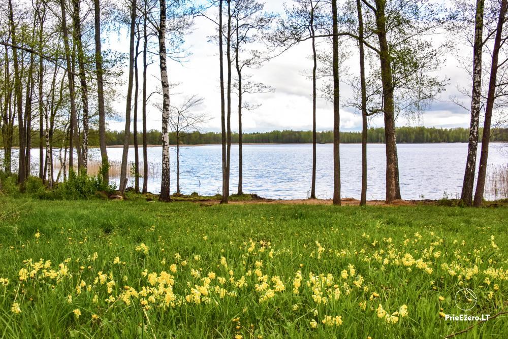Lauku māja pie Avila ezera Zarasai rajonā, Lietuvā - 35