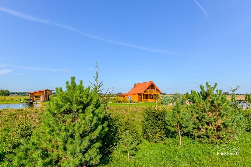 Lauku māja ar pirti Kauņas reģionā - 7