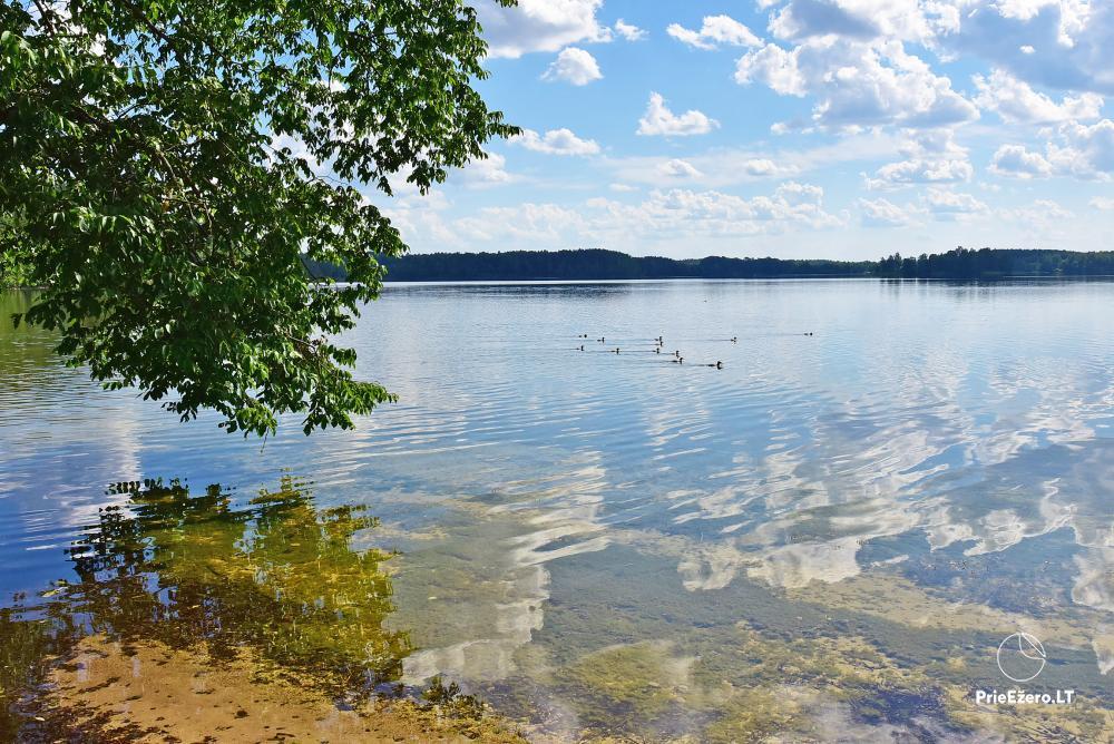 Lauku tūrisma pie ezera - 7