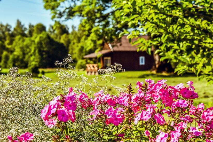 Brīvdienu māja - Lauku sēta Rietavas rajonā Šiuraičių sodyba - 7