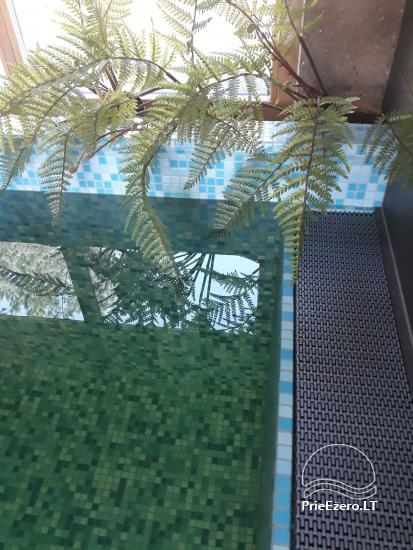 Villa un mini SPA pie ezera mežā - 9