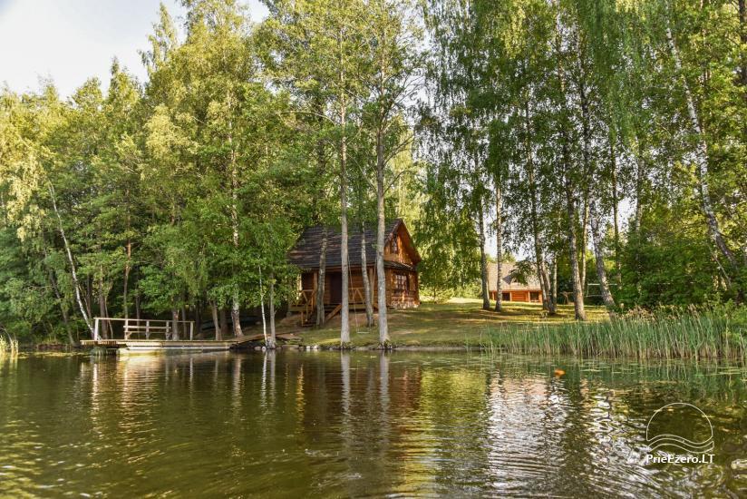 Guļbūve - villa un sauna pie Auslo ezera Zarasu rajonā - sēta AUSLA - 21