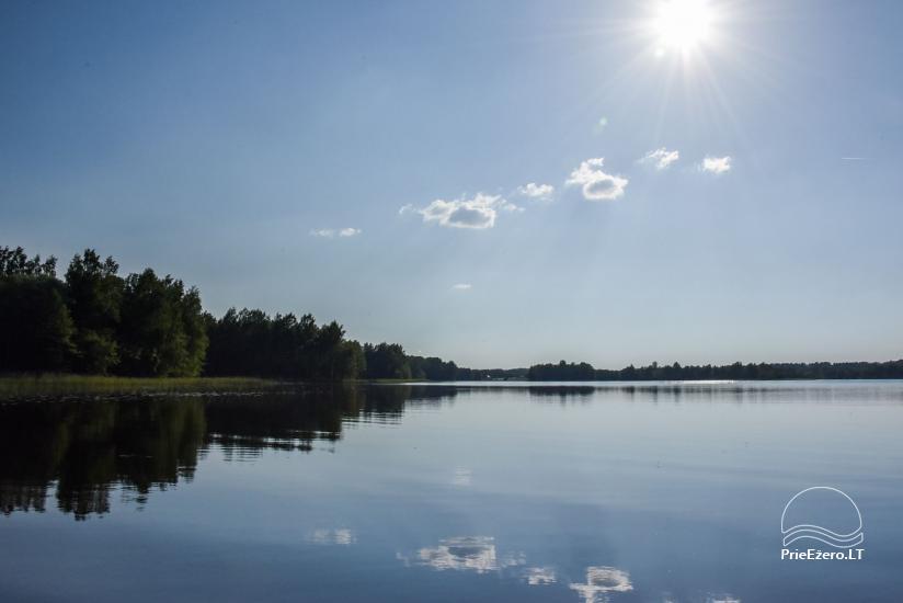 Guļbūve - villa un sauna pie Auslo ezera Zarasu rajonā - sēta AUSLA - 53