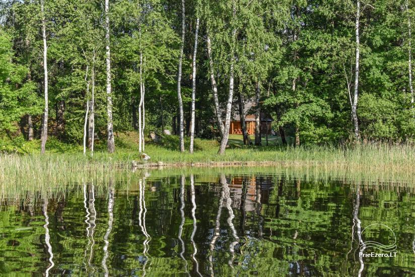 Guļbūve - villa un sauna pie Auslo ezera Zarasu rajonā - sēta AUSLA - 52