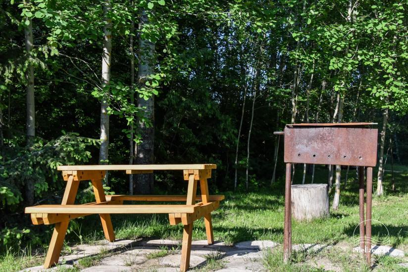 Guļbūve - villa un sauna pie Auslo ezera Zarasu rajonā - sēta AUSLA - 50