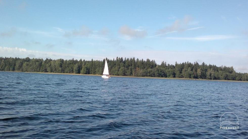 Lauku sēta Mazā ezera viļņa Lietuvā - 11