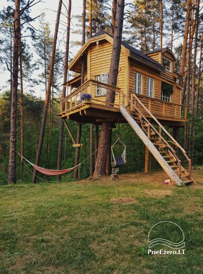 Koka māja ezera krastā Lietuvā - 1